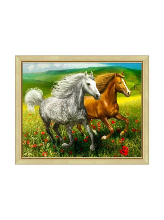 Gyémántfestés szett, lovak a réten, 50x40cm